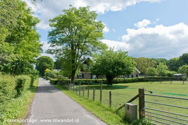 Groene Wissel Hoenderloo