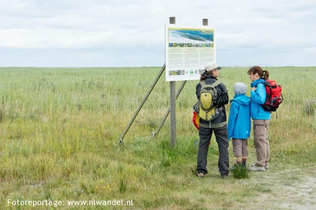 Groene Wissel Ameland: Hollum