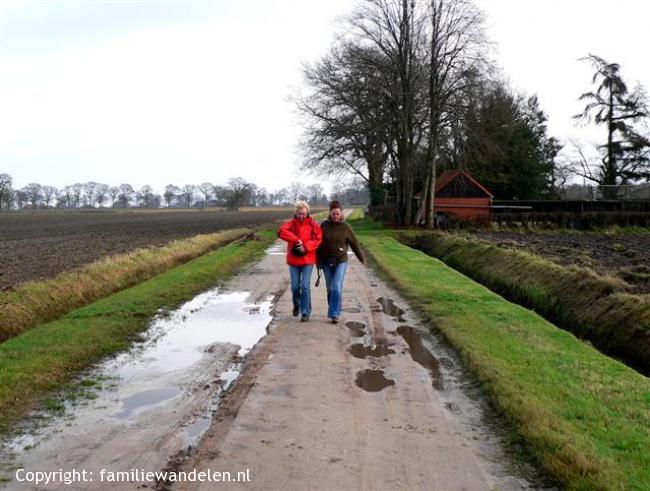 Wandeling bij Noordlaren