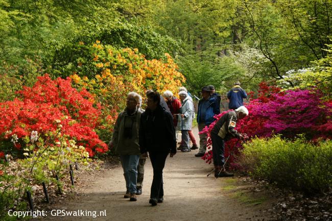 Botanische tuin Belmonte - Blauwe Kamer